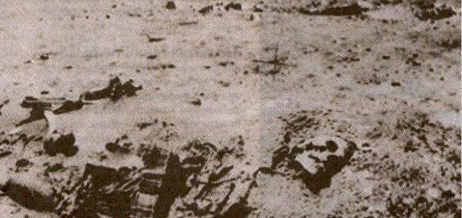 скелет на луне