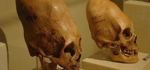 длинные черепа