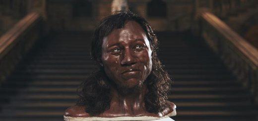Модель человека из Чеддара, созданная Kennis & Kennis Reconstructions