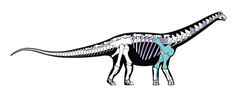 динозавтр