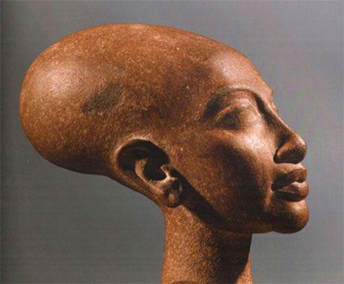 длинный череп