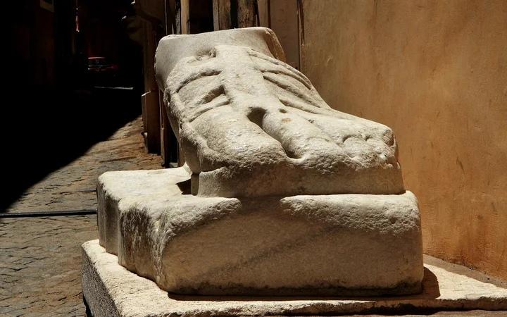Мраморная нога