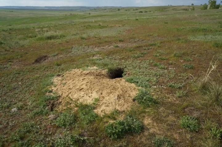 медведицкая гряда