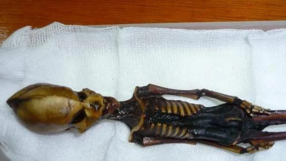 мумия из Атакамы
