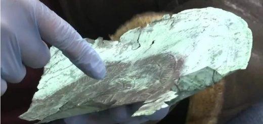 10000-летняя маска из внеземного металла