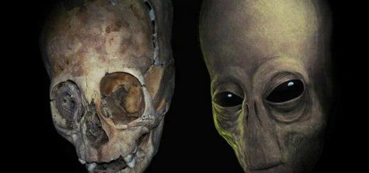 удлиненные черепа Паракаса