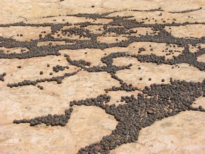 На юге штата Юта в США, где красные пески сменяется белыми и розовыми скалами, можно обнаружить тысячи маленьких железных сфер, которые скапливаются на склонах гор и собираются в «лужи» на песчанике Навахо. Размер варьируется от 3 мм до 7-10 см в диаметре. Их называют камни моки или сферы моки. Откуда пошло название необычных камней? Слово «моки» придумано индейским народом хопи и означает «мертвый». Изначально, прибывшие на еще неизученный континент Америка испанцы, народ хопи называли «индейцами моки». В начале 1900-х гг. их название было официально заменено на хопи. Согласно одной легенде, духи предков хопи приходят ночью на землю и вселяются в эти железные сферы. Благодаря ветру, камни моки оживают и наперегонки катаются по ночным пескам Юты. К утру духи успокаиваются и покидают сферы моки, символизируя умиротворение усопших. Камни моки также называют вишня навахо, ягоды навахо, мрамор хопи, сферы моки и камни шаманов. Геологи классифицируют их как конкреции, плотные шаровидные камни. Что такое камни моки? Камни моки состоят из песчаника, содержащего смесь гематита и оксида железа. Ядро окружено твердой оболочкой из минералов оксида железа. Изначально, песчаник скапливался около 180-190 миллионов лет назад в виде песчаных дюн, похожих на Сахару, которые покрывали Юту, Аризону, Колорадо, Вайоминг, Айдахо, Неваду и Нью-Мексико. Частички минералов, богатых железом, цементировались с кварцевым песком. Много веков спустя железо сплавлялось с частицами песка, придавая песчанику Навахо его удивительный цвет и узор. Согласно недавнему исследованию, возраст камней моки составляет не более 25 млн лет, а найденным образцам на Пария Плато в Аризоне всего лишь 300 тыс. лет. Марсианская черника Подобные конкреции встречаются не только на нашей планете! В 2004 году марсоход НАСА обнаружил конкрецию на Марсе, которую ученые назвали марсианской черникой. Считается, что марсианская «ягода» сформировалась так же, как и их земной аналог, что свидетельствует о том, что Марс когда-то