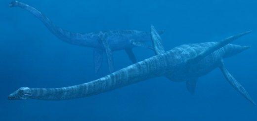 подводное чудовище