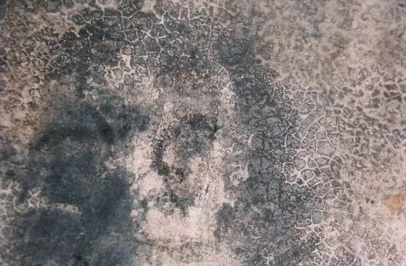 лица бельмеса