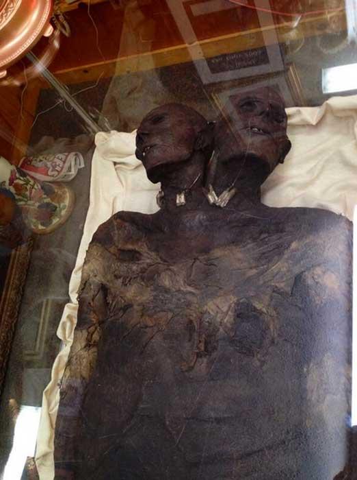 мумия гуманоида