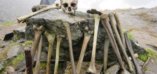 скелеты озера Роопкунд