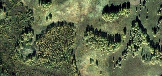 местность со спутника