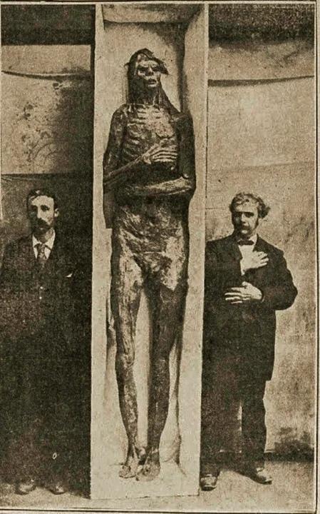 фотография мумии