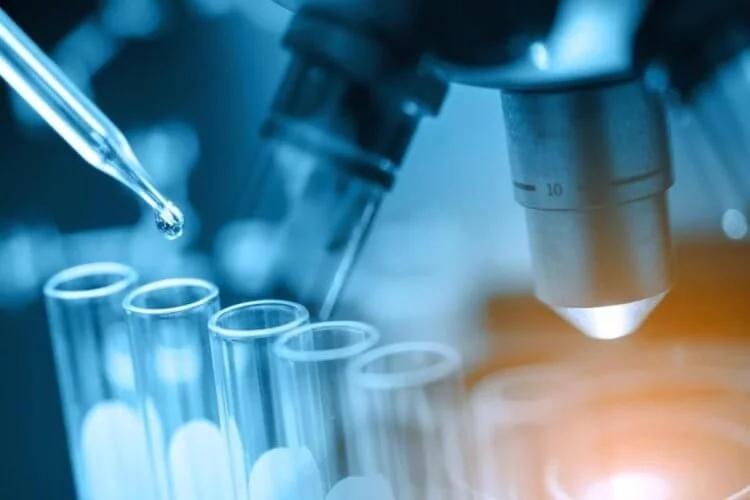 Использования ИИ при разработке лекарств — крайне перспективная технология