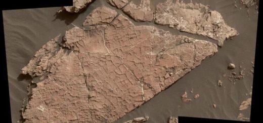 Возможные грязевые трещины, сохранившиеся в марсианской скале: сеть трещин в этой марсианской каменной плите, называемая «Старый Soaker», возможно, образовалась в результате высыхания слоя грязи более 3 миллиардов лет назад