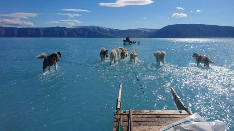 тающая Гренландия