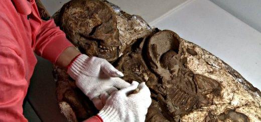 скелет матери, обнимающей ребенка