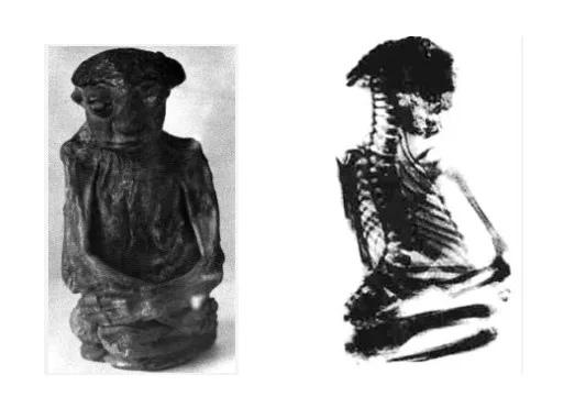 мумия карлика