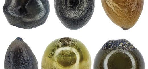 Cтеклянные микрометеориты