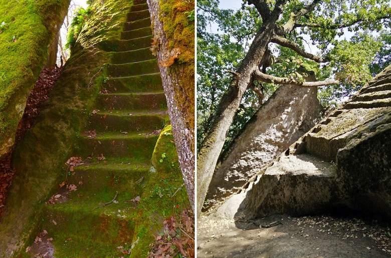 Лестница в джунглях Камбоджи