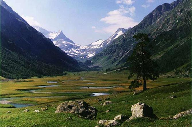 Долина Джатинга (Индия)