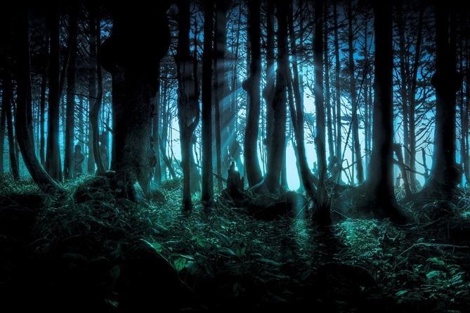 Лощина Черного Бамбука (Китай)