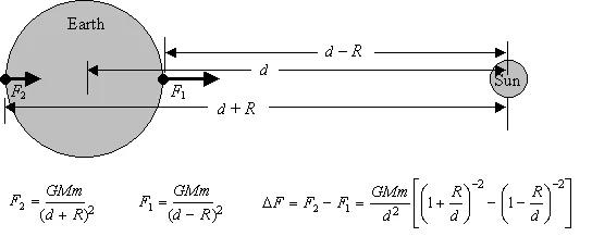 Силы действующие на разные стороны планеты отличаются. Сила F1 больше, чем сила F2, так как ближняя сторона ближе к солнцу. На рисунке приведены формулы для вычисления сил их разницы.