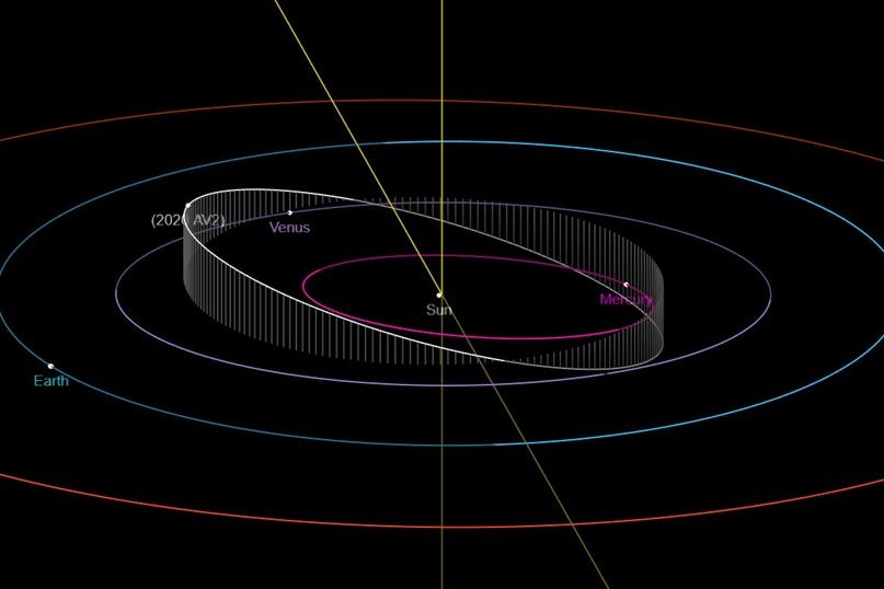 Орбита астероида 2020 AV2 (белая линия)