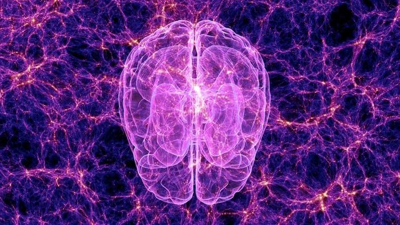 Может ли Вселенная обладать сознанием с точки зрения науки