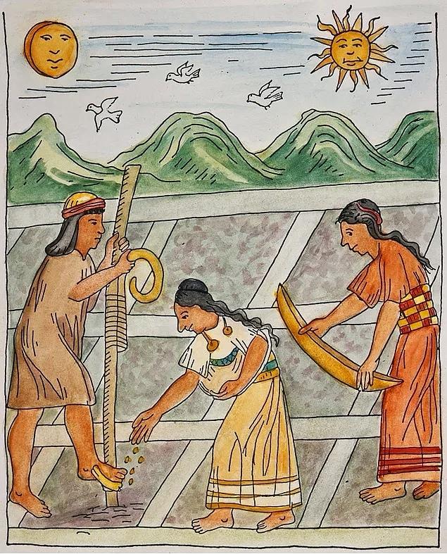 сельское хозяйство инков