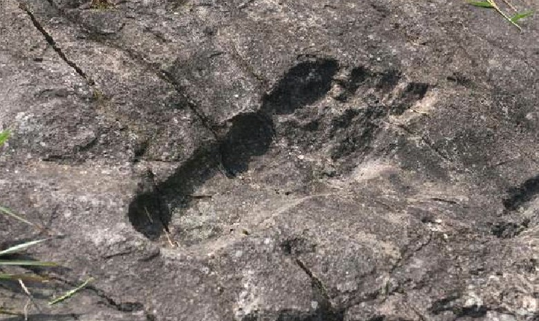 древний след человека