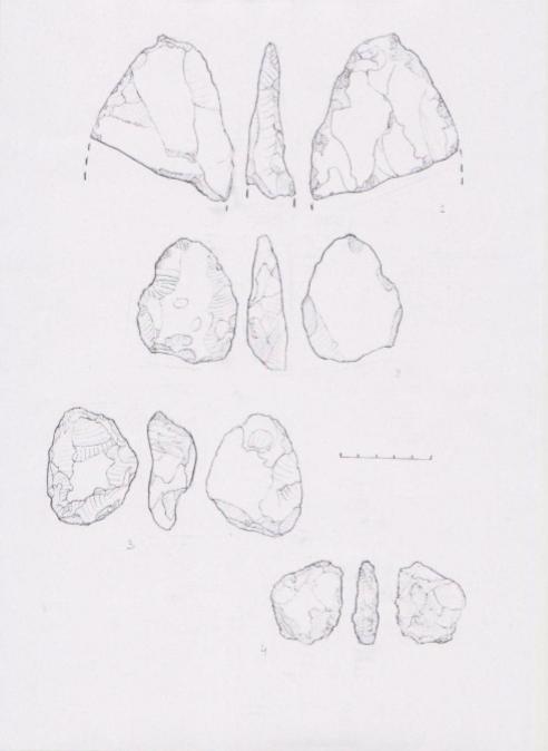 Рис. 1 Кремневые изделия среднего палеолита из Карловки (2-4) и Горбаконовки (1).