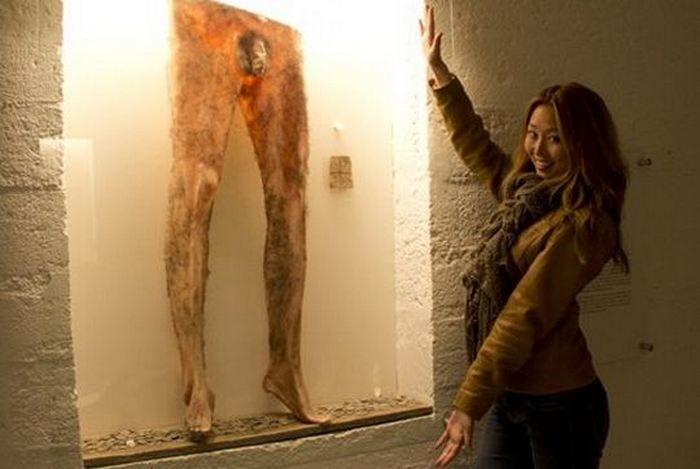штаны из человеческой кожи