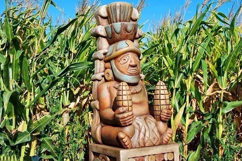 кукурузный идол